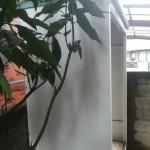 物置の撤去・解体「庭の不用品回収」