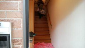 アパート階段作業